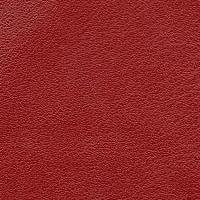 Montana_577_red