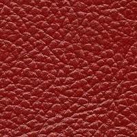 Principelux_038_red