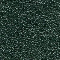 patine_25_green