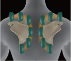 Inada Duet - masáž horní části těla