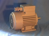 elektromotor Ex e  Siemens 0,6 kW , 2845 ot./min.