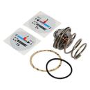 ESBE vnitřní vložka TV-60st (termostatická patrona) pro zdroje na tuhá paliva