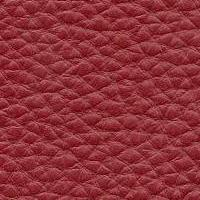 Anilbost_3358_red