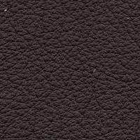 Regal_1657_darkbrown