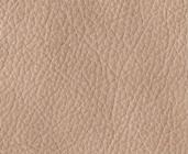 Tmavěbéžová kůže  Beige 697