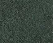 Zelená kůže Antic Green 159