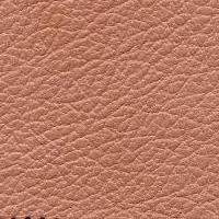 taurus_6296_pink